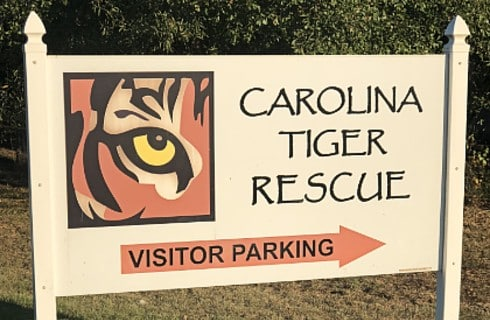 Large wooden sign with tiger's eye and text: Carolina Tiger Rescue Visitor Parking.