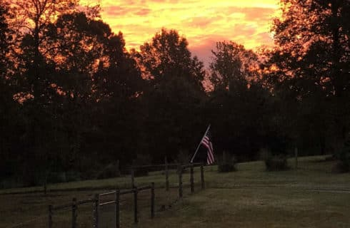 Blazing gold and lavender sunset through the trees overlooking a flag hanging from a wooden fence.
